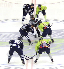 Florida Everblades in der GERMAIN ARENA, Ft. Myers
